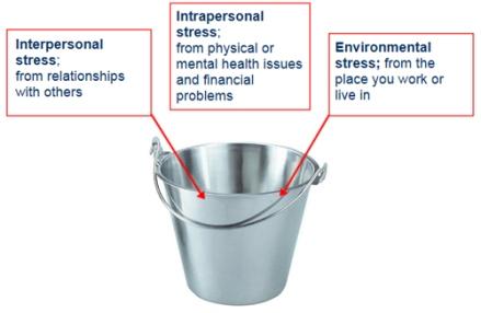 Stress_bucket